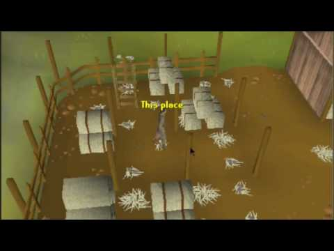 The Filipino Runescape Man House Tour