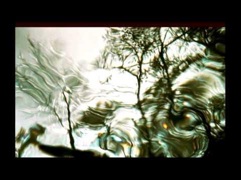 Four Skies - Arto Lindsay