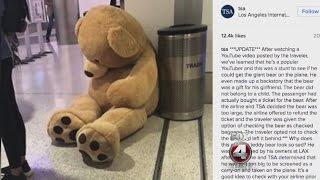 Bear in airport