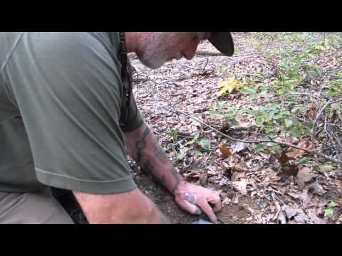 Modern Trapping Part 11 Urine Post Set