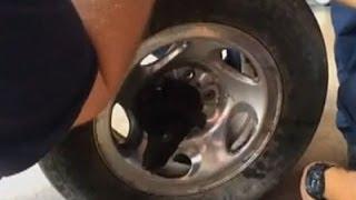 Bomberos rescatan a un cachorrito atascado en la llanta de una rueda