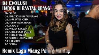 download lagu Dugem Terbaru Harok Di Rantau Urang House Musik Remix gratis