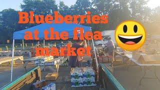 Flea market selling blueberries
