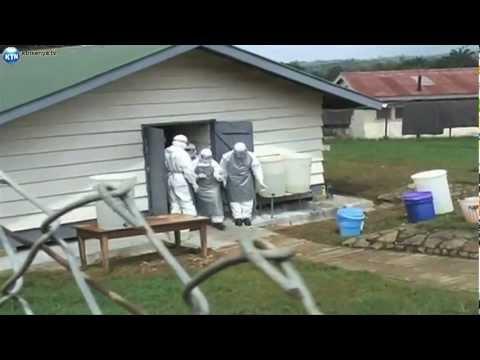 Ebola Virus In Uganda
