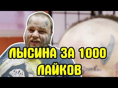 Сделал прическу залысина за 1000 лайков ! )