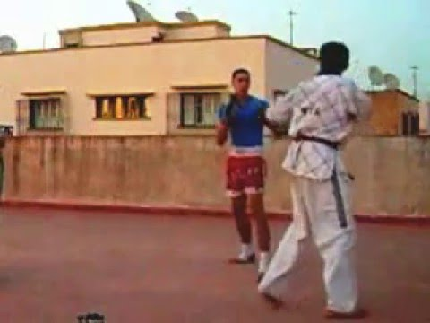 taekwondo vs champion of savate and kung fu Image 1