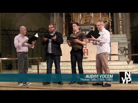 Audivi vocem (Thomas Tallis) - New York Polyphony