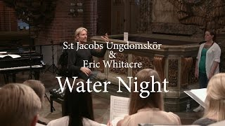 Watch Eric Whitacre Water Night video