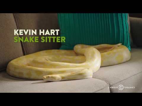 "Kevin Hart Deals with a Snake on His Couch - ""The Secret Life of Pets"""