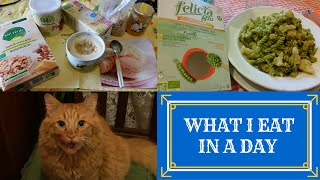 WHAT I EAT IN A DAY BIO #3 | Cosa Mangio In Un Giorno e Pollon Si Lecca I baffi