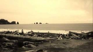 Watch Puscifer Oceans video