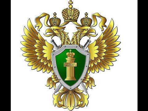Участковый г Бабушкин. Нарушение ПДД