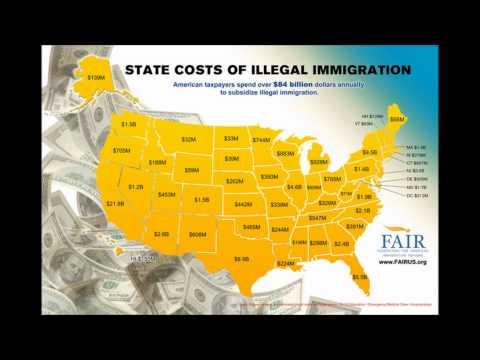 Immigration Media Movie