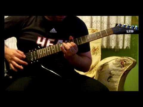 Animal Instinct Guitar Solo By The Cranberries