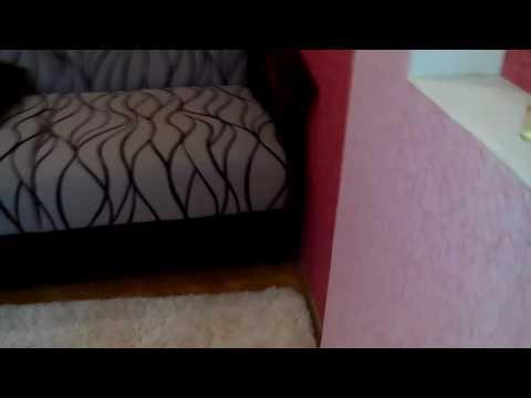 Духи двигают диван