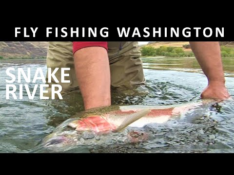 Snake River Steelhead with Double Spey Outfitters - Fishing with Ladin