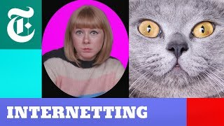 Cats vs. Dogs: Who Rules the Internet? | Internetting Season 2