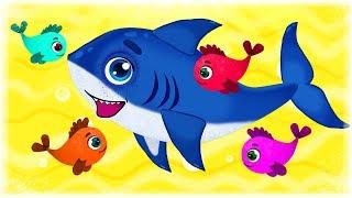 Baby Shark - Songs for Children - HeyHop Kids
