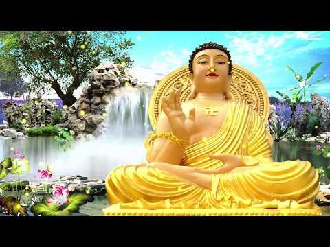 Kể Truyện Đêm Khuya - Truyện Nhân Quả Phật Giáo Hay Nhất - GIẾT CHÓ ĂN THỊT CẢ NHÀ BỊ BỆNH GAN thumbnail