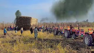 WAHH !!! Seven (7) Tractors Pulling one 1stuck trolly sugarcan /Tractor stunt in punjab