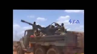 Ethiopian army claims it's killed hundreds of Al-Shabaab militants in Somalia
