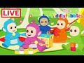 Teletubbies ☆ NEW Tiddlytubbies Cartoons LIVE! ☆ New Cartoons Episodes ☆ Cartoons for Kids ▻ Click to subscribe: http://bit.ly/SubscribeTeletubbies ...