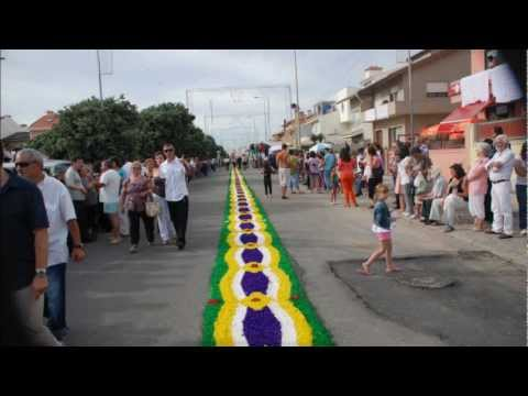 TAPETES DE FLORES - LAVRA - MATOSINHOS