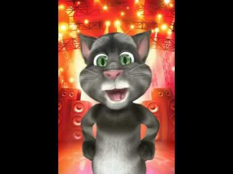 Tom O Gato Declaração De Amizade video