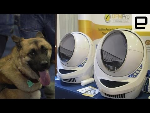 Best pet tech of CES 2016