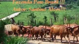 FAZENDA PAU BRASIL! / AUTOR: / SANTINO ALVES! / INTÉRPRETE: AMAURY