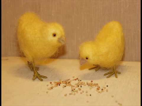 The Tweets - The Birdy Song(Chicken Edition)