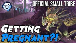 Trying to Get Pregnant by a Reaper Queen! | Small Tribe PVP Official | ARK: Survival Evolved | Ep3