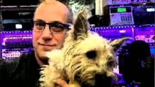 Watch Brian Eno The Belldog video