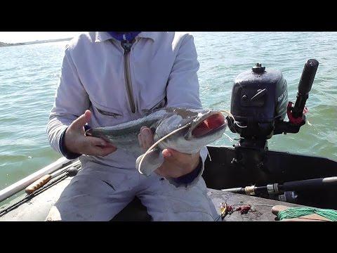 рыбалка на квок на оке видео
