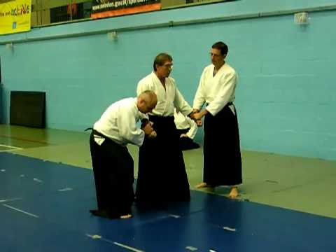 Aikido Demo Part I Image 1