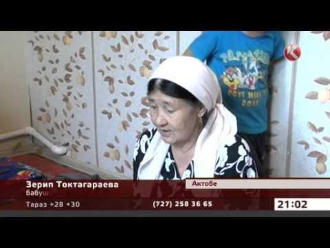 Брянская губерния новости видео вчера