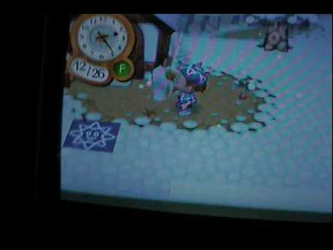 Animal Crossing CF: A graphics Glitch? Or odd collision data?/Introduction!