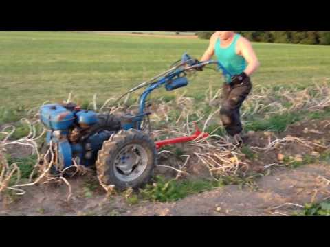 Nibbi AE 11 With homemade potato digger .  two wheel tractor.2