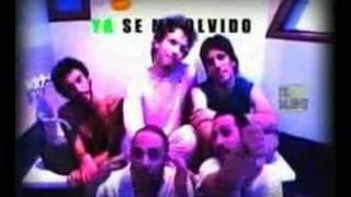 Vídeo 47 de Árbol