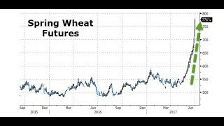 Food Prices Up, Spring Wheat Up, Winter Wheat Up, Pork & Beef Up (404)