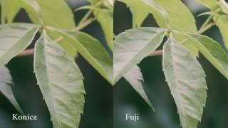 Konica Lenses vs Fuji 18-55mm on X-T2