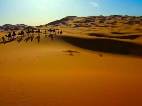 Sundose Psy Maroco video