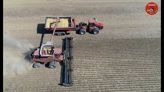 2018 Soybean Harvest in Darke County Ohio