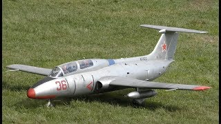 Beautiful RC L29-Delfin / Jetpower Bad Neuenahr 2017