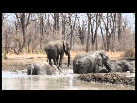 Malawi Tourist Attractions at a Glance