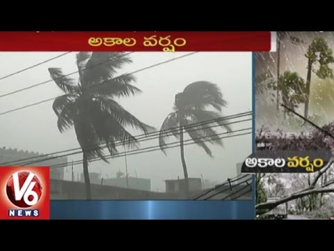 Heavy rains in Telangana   Farmers in concern with Crop Loss   V6 News
