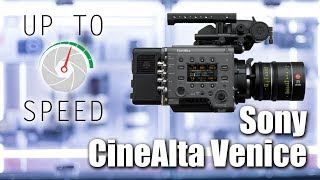 Cinealta Venice - Up to Speed