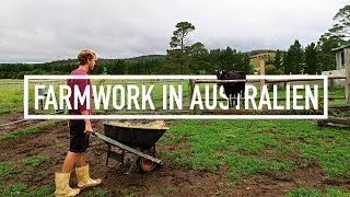 FARMWORK IN AUSTRALIEN // Work & Travel Australien #66