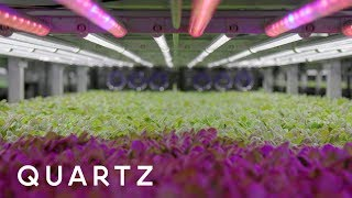 Future of Food: Farming in the age of climate change