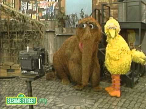 Sesame Street: Big Bird And Snuffy Get The Picture video